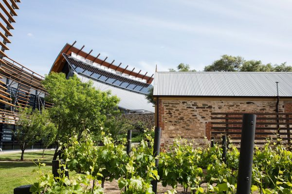 National Wine Centre