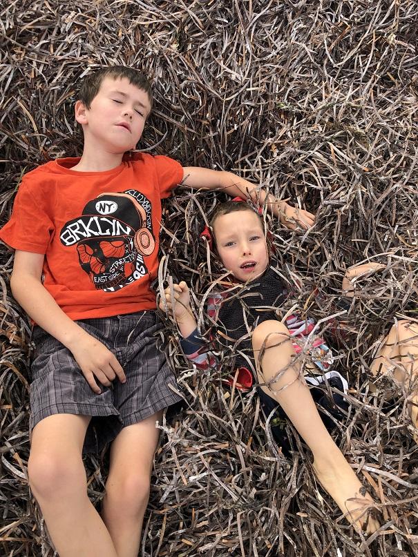 Waechter family beach fun